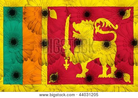 Stylized  National Flag Of Srilanka    With Gerbera Flowers