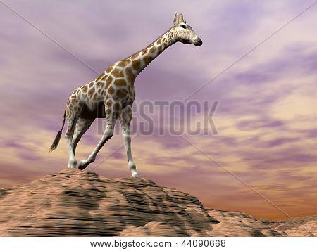 Giraffe Observing On A Dune - 3D Render