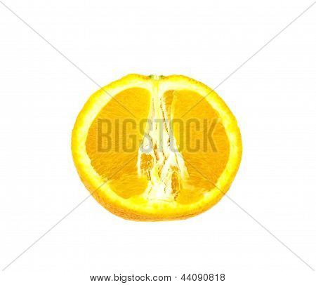 Orange slices on white