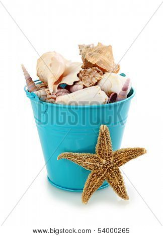 Blue bucket with seashells on white background