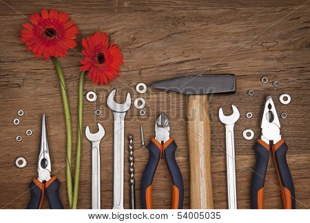 Set of different tools on wooden background with gerber flowers
