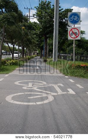 Bicycle Lane In The Park