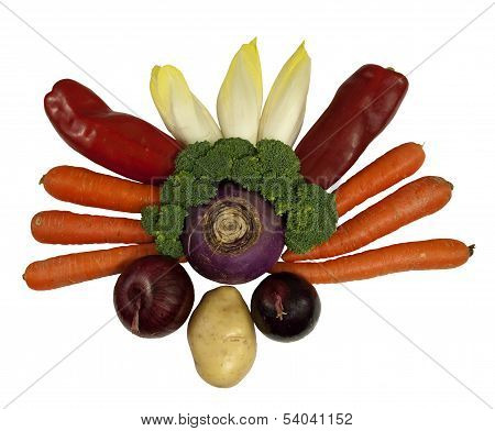 healthy fresh vegetables