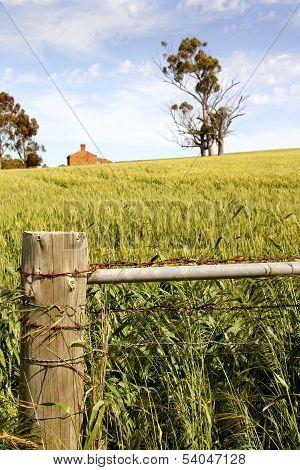 Australian Rural Landscape