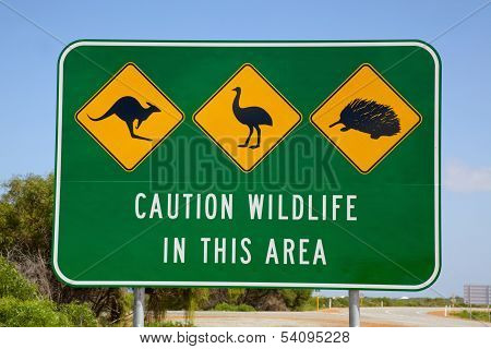Australian Wildlife Sign