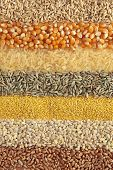 Cereals - ,wheat, barley, millet, rye, rice,maize and oats