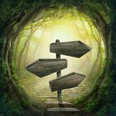 stock photo of surrealism  - Wooden arrows road sign in the magic dark forest - JPG