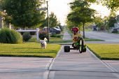 pic of tricycle  - Young boy walking the dog with his tricycle on the nicely cut grasses in their neighborhood - JPG