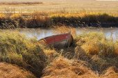foto of dock a pond  - The bow of a canoe docked in tall grass by a pond - JPG
