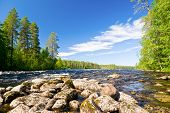 Rapids on the Pistojoki river in Karelia, Russia