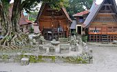 pic of minangkabau  - The stone chairs of Ambarita where tribal elders held council - JPG