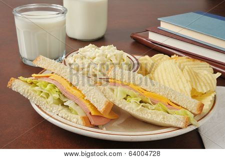 Baloney Sandwich And Coleslaw