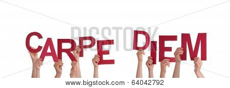 Hands Holding Carpe Diem