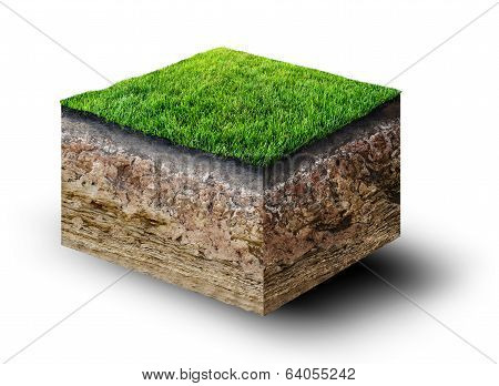 Cut Of Soil With Grass