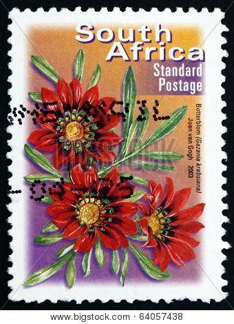 Postage Stamp South Africa 2003 Botterblom, Flowering Plant