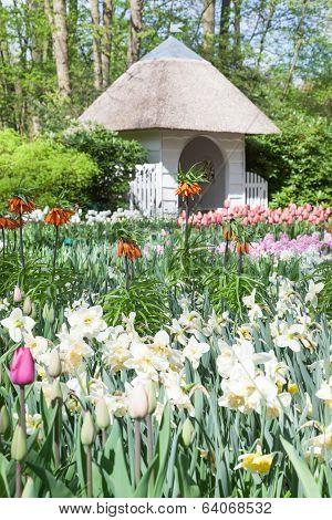 Keukenhof Garden Lisse Netherlands