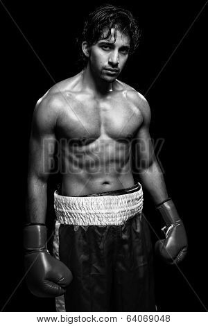 Male boxer. Studio shot over black.