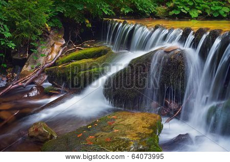 Forest landscape with cascading mountain river. Waterfall in mountain forest. Carpathians, Ukraine
