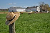 stock photo of silos  - Amish straw hat laying on a fence post in a Pennsylvania Amish farm - JPG