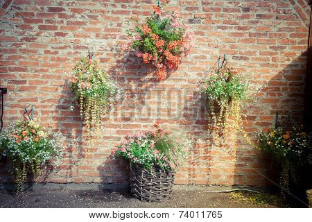 vintage wall with flowers. Spring. Decoration. nice.