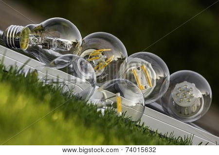Led, Halogen And Tungsten Bulbs On Solar Panel, Some On The Grass