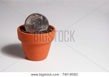 American Dollar Coin Planted in a Clay Pot