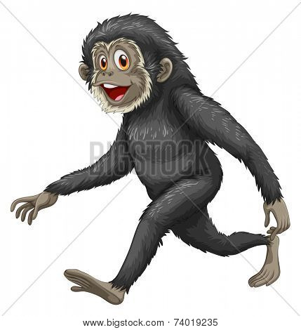 Illustration of a black gibbon walking