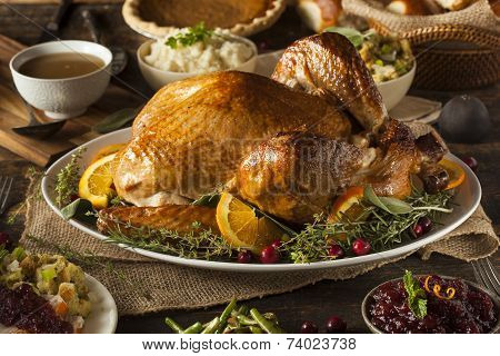 Whole Homemade Thanksgiving Turkey
