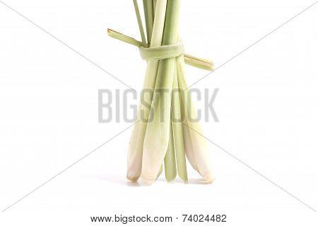 Lemon Grass Isolated On White