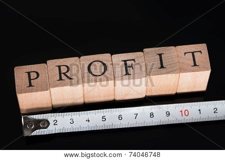 Measuring Business Profits