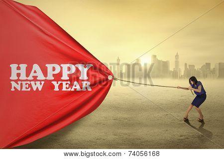 Entrepreneur Pulling New Year Banner