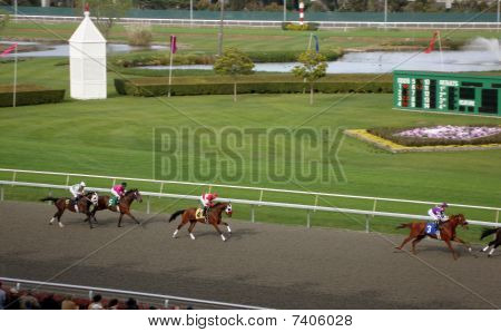 Horse Racing At Golden Gate Fields