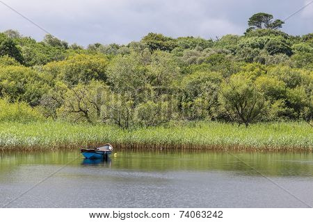 Rowing Boat On Quiet Lake