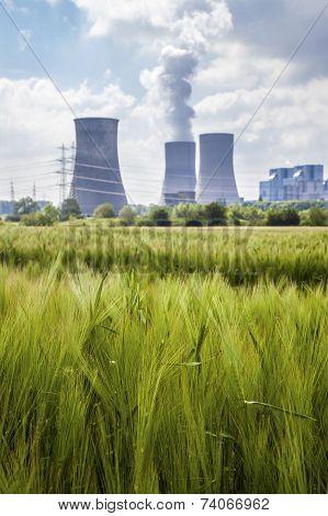 Meadow and Smoke Emission