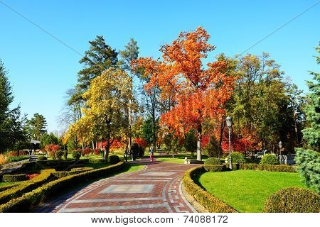 Novi Petrivtsi, Ukraine - October 14: The Trees In Autumn Colors In Mezhigirya On October 14, 2014 I