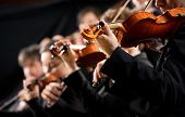 picture of orchestra  - Symphony orchestra first violin section performing on dark background - JPG