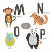 stock photo of owls  - Cute vector zoo alphabet with cartoon animals isolated on white background - JPG