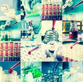 picture of microbiology  - Work in the microbiology laboratory medical research set - JPG