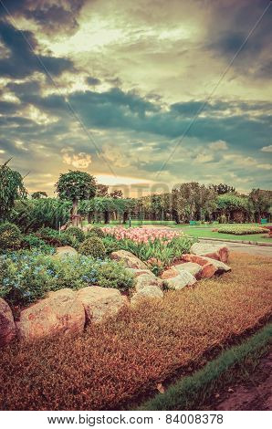 Dreamy park in Thailand, with beautiful flowers and sunset in vintage style