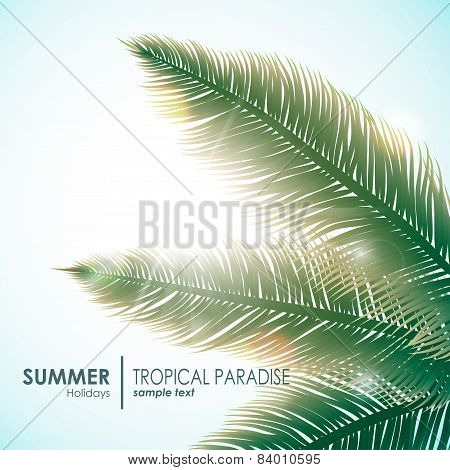 Summer holidays sunny background with palm leaves