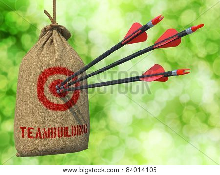 Teambuilding - Arrows Hit in Red Target.