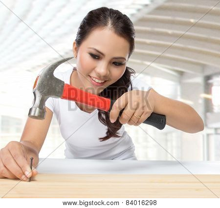 Young Beauty Female Carpenter