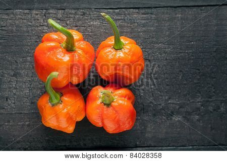 Trinidad Moruga Scorpion Pepper