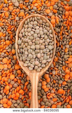 Mix Of Different Lentil Types. Super Foods