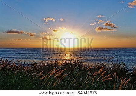 Sea Horizon Sunset