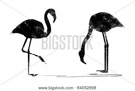 abstract flamingos