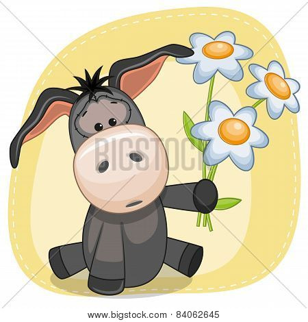 Boy Donkey With Flowers