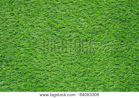 Artificial Green Grass Field