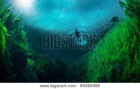 Snorkelling In Freshwater in Australia
