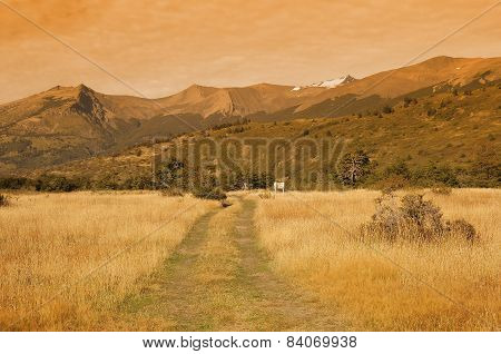 Road On The Meadow.